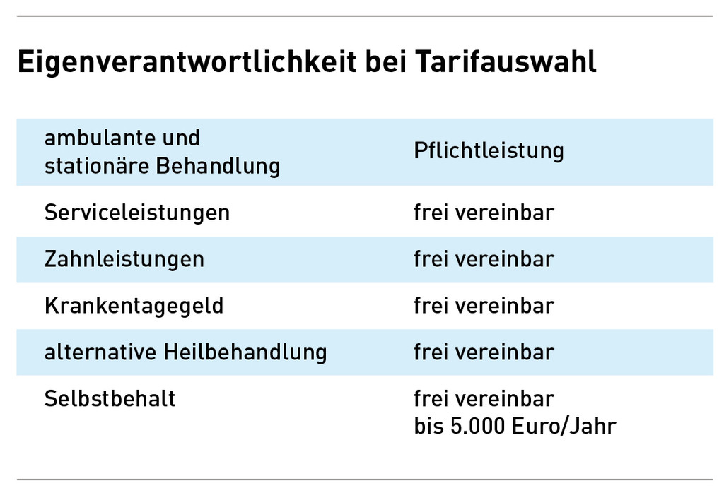 file-preview-infografik-tarifauswahl
