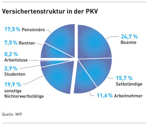file-preview-infografik-versichertenstruktur